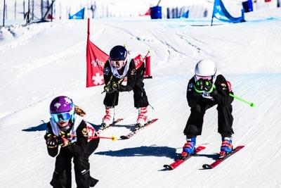KOM U14/16 & FIS SKIER CROSS