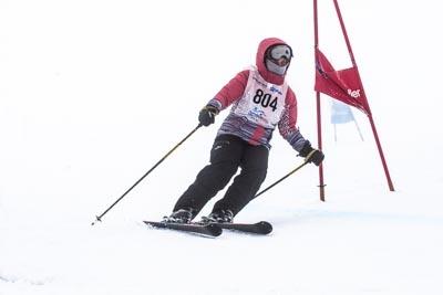 Multi Class Event, Alpine GS – Race Shots
